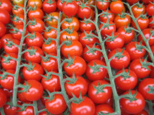 помидорки черри